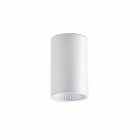 Picture of FARO REL CEILING SPOT LED 25W WHITE CYLINDER METAL