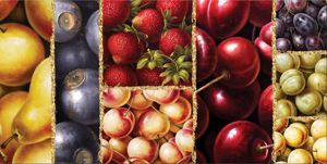 Picture of WALL ARTWORK FRUITS CANVAS PRINT 120X90