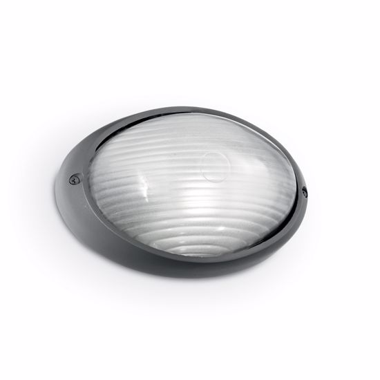 Picture of IDEAL LUX MIKE 50 OUTDOOR LAMP AP1 SMALL ANTHRACITE