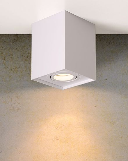 Picture of CEILING LIGHT WHITE METAL SHAPE WITH AN ADJUSTABLE LIGHT