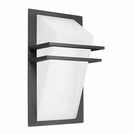 Picture of EGLO PARK OUTDOOR WALL LIGHT COLOR ANTHRACITE IN ALUMINIUM AND GLASS IP44