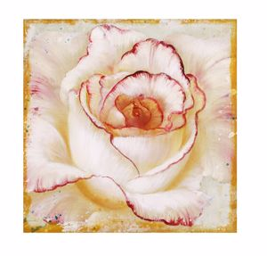 Picture of WALL ART WHITE ROSE 30X30 CANVAS PRINT