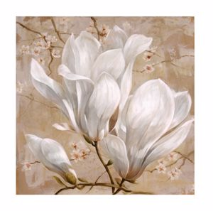 Picture of WALL ARTWORK PROVENCAL WHITE FLOWER CANVAS PRINT 100X100