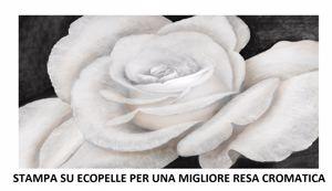 Picture of GRANDE QUADRO FIORE ROSA BIANCA 200X120 STAMPA SU ECOPELLE ALTA QUALITÀ