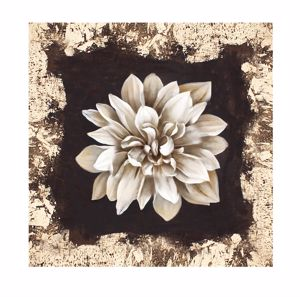 Picture of WALL ARTWORK WHITE FLOWER CANVAS PRINT 30X30