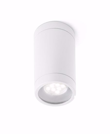 Picture of CEILING SPOTLIGHT WHITE CYLINDER FOR INDOOR/OUTDOOR