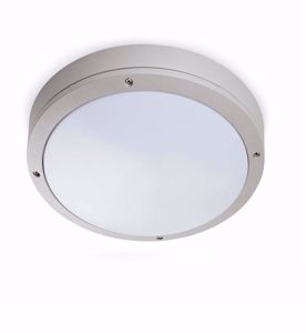 Picture of FARO YEN OUTDOOR CEILING LAMP GREY